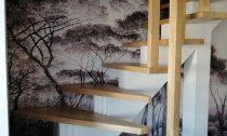 scari lemn stejar